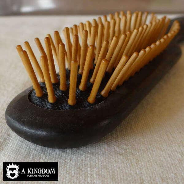 Borstel met houten pennen