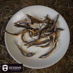 Snack Hond-Kat Carnis Spiering
