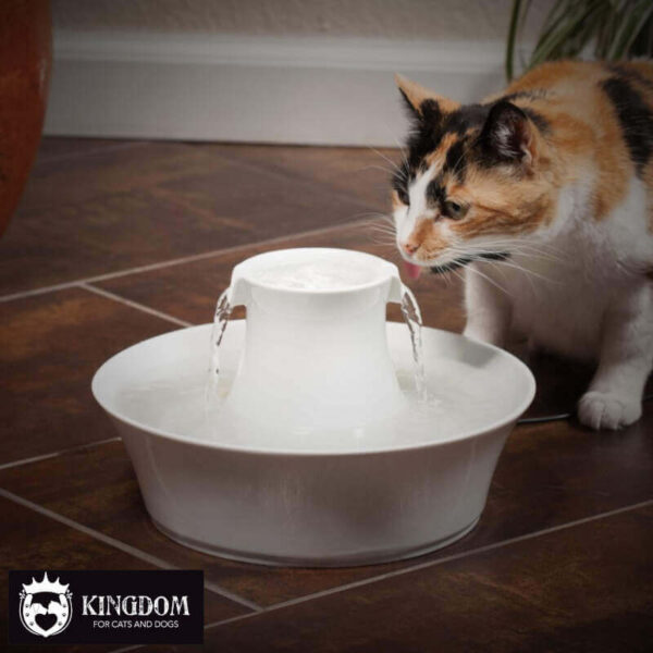 Drinkwell® Avalon Pet Fountain - 2 L