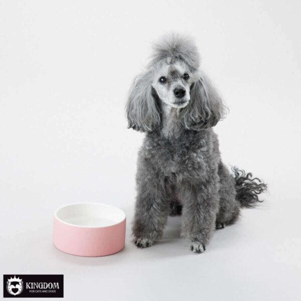 Water/Voerbak Paikka Cool Bowl Pink M