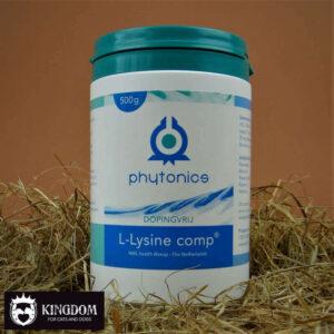 Phytonics L-lysine comp 500gr